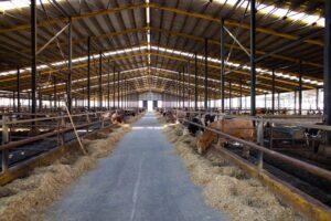 Karkas Çiftliği Galeri - 10